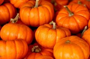 pumpkin-220122_1280